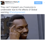 Blackpeopletwitter, Global Warming, and Blue: Matthew A. Cherry  @MattheWACherry  Following  They can't impeach you if everyone is  underwater due to the effects of Global  warming <p>The Deep Deep Blue State (via /r/BlackPeopleTwitter)</p>