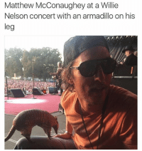 America, Chill, and Matthew McConaughey: Matthew McConaughey at a Willie  Nelson concert with an armadillo on his  leg  leg I would fuck McConaughey. I'm not even gay. He's just that hunky and chill. THIS IS WHAT AMERICA NEEDS MANNNNNN, THIS COULD UNITE US. (IG: @tank.sinatra)