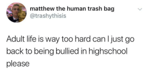 Dank, Life, and Memes: matthew the human trash bag  atrashythisis  Adult life is way too hard can l just go  back to being bullied in highschool  please meirl by Its_Matt FOLLOW HERE 4 MORE MEMES.