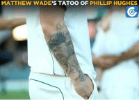 Memes, 🤖, and Phillips: MATTHEW WADE  S TATOO OF PHILLIP HUGHES A great gesture from Matthew Wade.