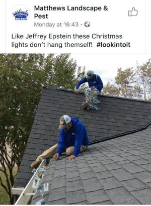 Epstein: Matthews Landscape &  MATTHEWS  Pest  286-0967  Monday at 16:43  Like Jeffrey Epstein these Christmas  lights don't hang themself!