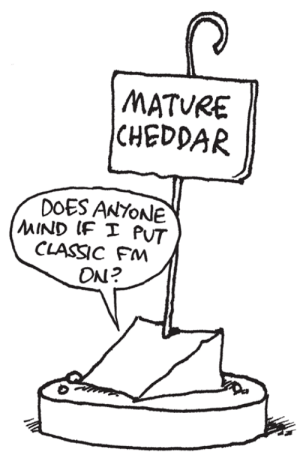cheddar: MATURE  CHEDDAR  DOES ANYOnle  CLASSIC FM  ON?