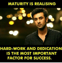 Memes, Work, and Success: MATURITY IS REALISING  HARD WORK AND DEDICATION  IS THE MOST IMPORTANT  FACTOR FOR SUCCESS. Maturity is... rvcjinsta