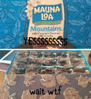 Wtf, Chocolate, and The O.C.: MAUNA  L9A  TE THE O.c  Mountains  Milli Chucolate Covere  Macadainis  YESSSSSSSSS  wait wtf B-but... my chocolate...