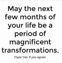 Life, Memes, and Period: Mav the next  few months of  vour life be a  period of  magnificent  transformations.  (Type 'Yes' if you agree) Absolutely YES. letsgo