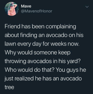 You can make some money now: Mave  @MavenofHonor  Friend has been complaining  about finding an avocado on his  lawn every day for weeks now.  Why would someone keep  throwing avocados in his yard?  Who would do that? You guys he  just realized he has an avocado  tree You can make some money now