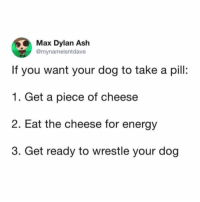 Ash, Energy, and Memes: Max Dylan Ash  @mynameisntdave  If you want your dog to take a pill:  1. Get a piece of cheese  2. Eat the cheese for energy  3. Get ready to wrestle your dog ☝🏻 update: im now full of cheese and dog medicine @chiki_khuntmait