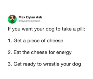 Ash, Energy, and Dog: Max Dylan Ash  @mynameisntdave  If you want your dog to take a pill:  1. Get a piece of cheese  2. Eat the cheese for energy  3. Get ready to wrestle your dog