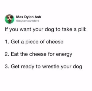 Good luck boys and girls.Tw: @mynameisntdave: Max Dylan Ash  @mynameisntdave  If you want your dog to take a pil:  1. Get a piece of cheese  2. Eat the cheese for energy  3. Get ready to wrestle your dog Good luck boys and girls.Tw: @mynameisntdave