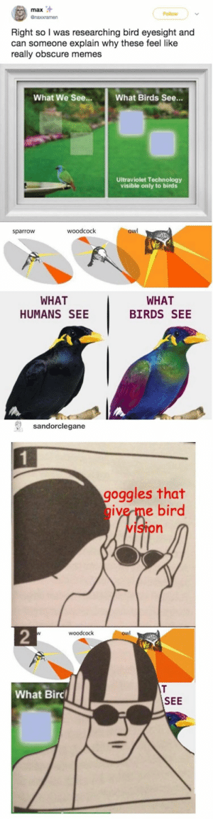 : max  Follow  @naxxramen  Right so I was researching bird eyesight and  can someone explain why these feel like  really obscure memes  What We See...  What Birds See...  Ultraviolet Technology  visible only to birds  owl  woodcock  sparrow  WHAT  WHAT  HUMANS SEE  BIRDS SEE  sandorclegane  goggles that  give me bird  vIston  2  woodcock  owl  T  What Birc  SEE