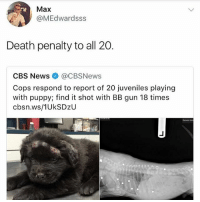 Memes, News, and Cbs: Max  @MEdwardsss  Death penalty to all 20.  CBS News@CBSNews  Cops respond to report of 20 juveniles playing  with puppy; find it shot with BB gun 18 times  cbsn.ws/1UkSDzU Poor puppy