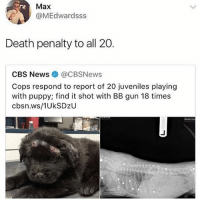 Memes, News, and Cbs: Max  @MEdwardsss  Death penalty to all 20.  CBS News@CBSNews  Cops respond to report of 20 juveniles playing  with puppy; find it shot with BB gun 18 times  cbsn.ws/1UkSDzU :(
