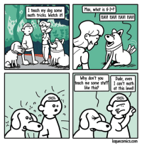 "Dude, Omg, and Tumblr: Max, what is 6-2-?  I teach my dog s  math tricks. Watch it!  ome  HAV! HAV! HAV! HAV!  Why don't you  Dude, even  teach me some stuffI can't math  at this level!  like this?  laquecomics.com <p><a href=""https://omg-images.tumblr.com/post/160634432827/math"" class=""tumblr_blog"">omg-images</a>:</p>  <blockquote><p>Math</p></blockquote>"