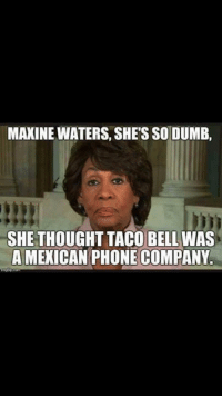 thumb_maxine waters shes so dumb she thought taco bell was 17972883 25 best dank fallout memes trumps memes, danks memes, fallouts memes
