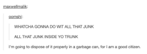 WATCHA GONNA DOomg-humor.tumblr.com: maxwellmalik:  oomshi:  WHATCHA GONNA DO WIT ALL THAT JUNK  ALL THAT JUNK INSIDE YO TRUNK  I'm going to dispose of it properly in a garbage can, for l am a good citizen. WATCHA GONNA DOomg-humor.tumblr.com