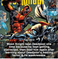 - Moon-knight is the batman of Marvel, but he kills. Edit: Fixed the background 😂. • - QOTD?!: Would you train under Moon-knight or Deadpool?!?: MAY 2010  Fact #413  WSN KOMICF  Moon Knight beat Deadpool, one  time because he kept getting  distracted, then beat him again after  learning about Deadpool's healing  factor & its weaknesses - Moon-knight is the batman of Marvel, but he kills. Edit: Fixed the background 😂. • - QOTD?!: Would you train under Moon-knight or Deadpool?!?