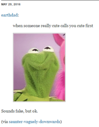 saunter: MAY 29, 2016  earthdad:  when someone really cute calls you cute first  Sounds fake, but ok.  (via saunter-aguely-downwards)