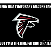 Patriots Haters: MAY BE ATEMPORARY FALCONS FAN  NFL MEMES  BUTIMALIFETIME PATRIOTS HATER
