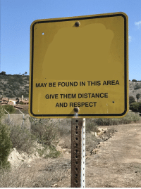 """Respect, Http, and Via: MAY BE FOUND IN THIS AREA  GIVE THEM DISTANCE  AND RESPECT <p>I feel like this has serious potential but im uncertain. Thoughts? via /r/MemeEconomy <a href=""""http://ift.tt/2EOlxZQ"""">http://ift.tt/2EOlxZQ</a></p>"""