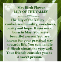 """May Birth Flower..   """"Lily of the valley"""".. and what it symbolizes..: May Birth Flower  LILY OF THE VALLEY  -FGMIQ  https://www.facebook.com/Dailysmiles  The Lily of the Valley  symbolizes humility, sweetness,  purity and hope. If you were  born in May: You are a  beautiful person. You are  known for your practical way  towards life. You can handle  difficult situations very well.  Your friends consider you as  a sweet person. May Birth Flower..   """"Lily of the valley"""".. and what it symbolizes.."""