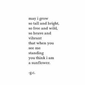 Brave, Free, and Wild: may i grow  so tall and bright,  so free and wild,  so brave and  vibrant  that when you  see me  standing  you think i am  a sunflower  -g.c