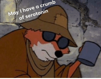 @pms has the funniest memes 😂: May I have a crumb  of serotonin @pms has the funniest memes 😂