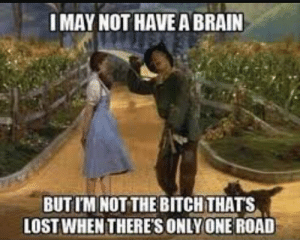Wizard of Oz - Meme by The_Awesome_Profile :) Memedroid: MAY NOT HAVE A BRAIN  BUTIM NOT THE BITCHTHATS  LOST WHENTHERE'S ONLY ONE ROAD Wizard of Oz - Meme by The_Awesome_Profile :) Memedroid