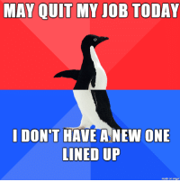 Bear, Imgur, and Today: MAY QUIT MY JOB TODAY  LDON'T HAVE A NEW ONE  LINED UP  made on imgur Shoulda used confession bear?