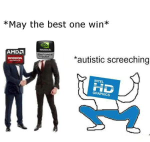 Best, Intel, and Nvidia: *May the best one win*  NVIDIA  AMD  GEFORCE  CUDA  *autistic screeching  RADEDN  GRAPHICS  INTEL  HD  GRAPHICS