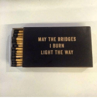 Memes, 🤖, and The Bridge: MAY THE BRIDGES  I BURN  LIGHT THE WAY Going into 2017 like: