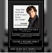 """Memes, 🤖, and Narnia: """"May the  force be  ever in your  favor,  Mr. Potter""""  -Gandalf  (The Chronicles of Narnia)  -Yoda The Godfather)  KATNISS, I AM YOUR FATHER.  -Captain Kirk. (The Avengers)  YOU'RE A WIZARD, PERCY  -Primrose Everdeen. (Star Trek)  ONE DOES NOT SIMPLY FLY  into Narnia. Spock (The Princess Bride) The more you look at this, the more it hurts..."""