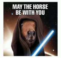 goodbye horses: MAY THE HORSE  BE WITH YOU