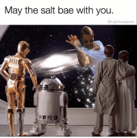 Bae, Memes, and 🤖: May the salt bae with you.  @high fiveexpert I'm totally geeking out right now!