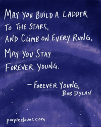 Memes, Forever, and Purple: MAy You BuiLD A LADDER  To THE STARS,  AND LIM  ON EVERY RUNG,  FOREVER you  FOREVER YOUNG,  Bog DyLAN  purple clovec Com