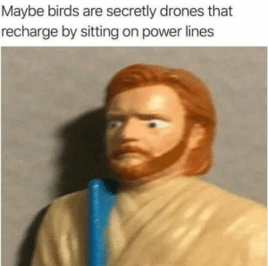 Memes, Birds, and Drones: Maybe birds are secretly drones that  recharge by sitting on power lines 50 Of Today's Freshest Pics And Memes