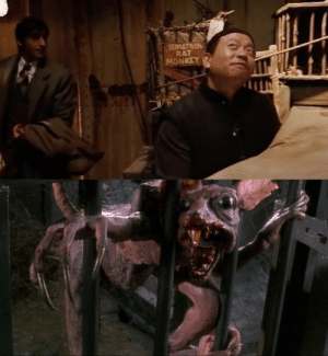 Maybe some people know but in king Kong (2004) peter Jackson pays homage to his 1992 film brain dead aka dead alive with the sumatran rat monkey the creature that starts the disease and zombies in brain dead aka dead alive: Maybe some people know but in king Kong (2004) peter Jackson pays homage to his 1992 film brain dead aka dead alive with the sumatran rat monkey the creature that starts the disease and zombies in brain dead aka dead alive
