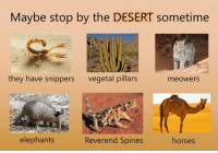 Dank, 🤖, and The Forest: Maybe stop by the DESERT sometime  they have snippers  vegetal pillars  meowers  elephants  Reverend Spines  horses you've just had a refreshening walk in the forest and met a lot of new friends. Time for the next adventure