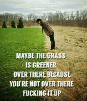 Fucking, Grass, and Youre: MAYBE THE GRASS  IS GREENER  OVER THERE BECAUSE  YOU'RE NOT OVER THERE  FUCKING IT UP