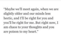 """Heart, Poison, and You: """"Maybe we'll meet again, when we are  slightly older and our minds less  hectic, and I'll be right for you and  you'll be right for me. But right now, I  am chaos to your thoughts and you  are poison to my heart."""""""