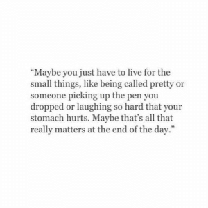 "Live For: ""Maybe you just have to live for the  small things, like being called pretty or  someone picking up the pen you  dropped or laughing so hard that your  stomach hurts. Maybe that's all that  really matters at the end of the day."