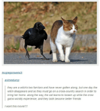 Friends, Cross, and Home: mcareaorswench:  animestump  they are a witch's two familars and have never gotten along, but one day the  witch disappears and so they must go on a cross-country search in order to  bring her home. along the way the cat learns to loosen up while the crow  gains worldly experience, and they both become better friends  I want this movie!!!!