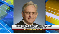 "Fbi, Memes, and News: MCCONNELL TO SUGGEST MERRICK GARLAND  AS NEXT DIRECTOR OF THE FBI  FOX NEWS ALERT BREAKING NEWS: On ""Fox News Sunday,"" Josh Holmes said that Senate Majority Leader Mitch McConnell will suggest Merrick Garland as next Director of the FBI."