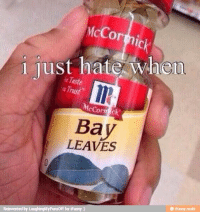 When bay leaves: McCormick  i lust hate  when  McCort  c  Bay  LEAVES  Reinvented by LaughingMyPunsoff for iFunny  ifunny mobi When bay leaves