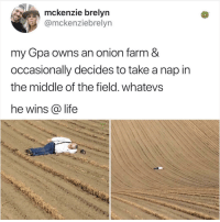 im worried that he might not actually be sleeping: mckenzie brelyn  @mckenziebrelyn  my Gpa owns an onion farm &  occasionally decides to take a nap in  the middle of the field. whatevs  he wins @ life im worried that he might not actually be sleeping