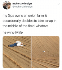 Funny, Life, and Onion: mckenzie brelyn  omckenziebrelyn  my Gpa owns an onion farm &  occasionally decides to take a nap in  the middle of the field. whatevs  he wins @ life This is the wholesomeness I needed today. (credit & consent: @mckenziebrelyn)