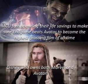 Dank, Disney, and Life: MCU fans spending their life savings to make  sure Endgame beats Avatar to become the  highest grossing film of all time  Disney who owns both Marvel and  Avatar Meirl by adobadobe MORE MEMES