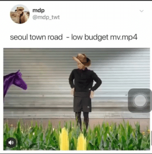 Budget, Seoul, and Mp4: mdp  @mdp_twt  seoul town road - low budget mv.mp4
