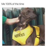 @bonkers4memes makes me laugh: Me 100% of the time  NERVOUS @bonkers4memes makes me laugh