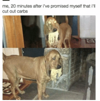 Relatable, Cutting, and  Weak: me, 20 minutes after i've promised myself that i'll  cut out carbs i am weak