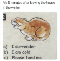 Winter, House, and Cold: Me 5 minutes after leaving the house  in the winter  a) I surrender  b) I am cold  c) Please feed me hey guys pls follow my account @bigsjw if you want to !! thanks so much. gonna go study . :(